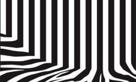 Code Zebra